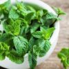 how to grow mint in pots